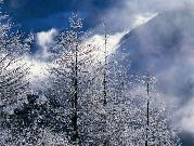 amazing_beaituful_winter_scenery_in_china_0971.jpg